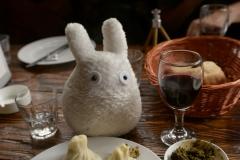 Totoro ir chinkali